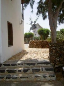 Mühle von Antigua - Molino de Antigua