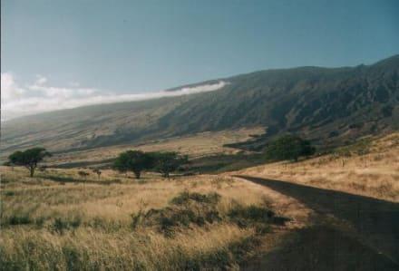 Haleakala Vulkan - Nationalpark Haleakala
