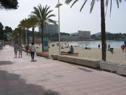 Strandpromenade - Strand Paguera/Peguera