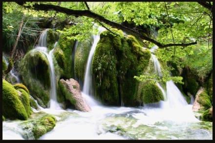 Plitvicer Seen - Wasserfall - Nationalpark Plitvicka Jezera (Plitvicer Seen)