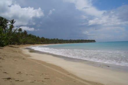 Herrliches Wasser & schöner Strand - Strand Las Terrenas