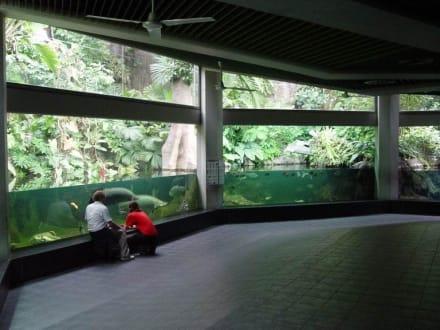 Tierpark Aquarium - Tierpark Friedrichsfelde