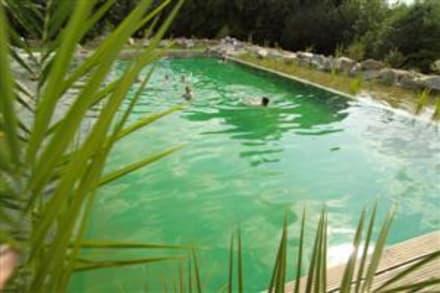 Naturbadeteich - Ferienhotel Veldensteiner Forst