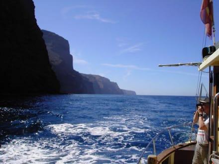 Entlang der Küste - Ausflüge Schifffahrt Bussard Tazacorte