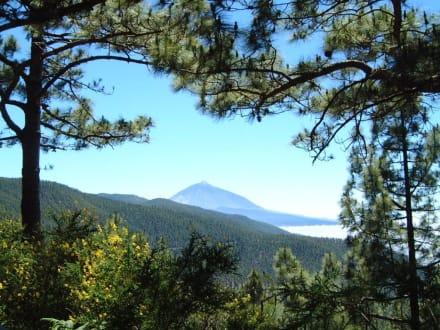 Gebigskamm im Zentrum der Insel - Teide Nationalpark