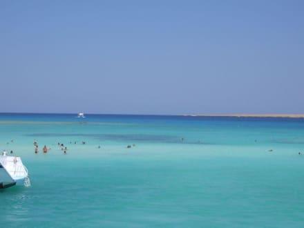 Giftun Insel - Schnorcheln Hurghada