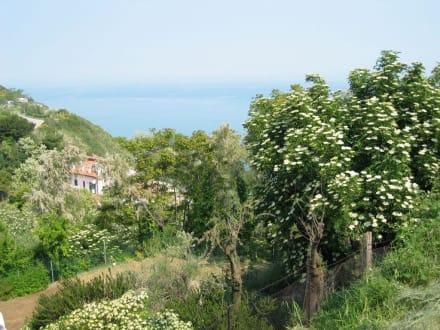 Casteldimezzo - Casteldimezzo