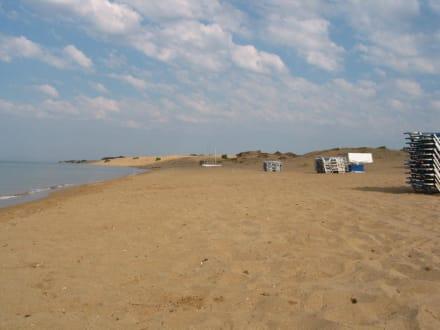 Strand von Issos - Strand Issos