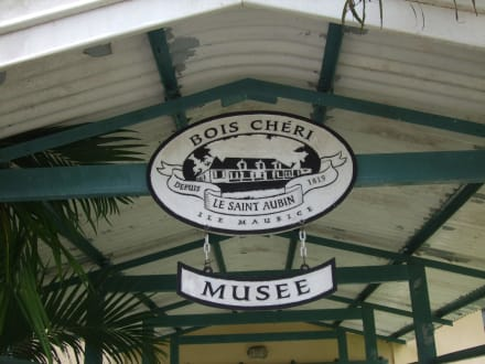 Teefabrik in Bois Cheri - Teefabrik Bois Cheri