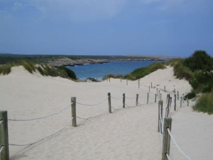 Weg zum Strand - Strand Son Saura