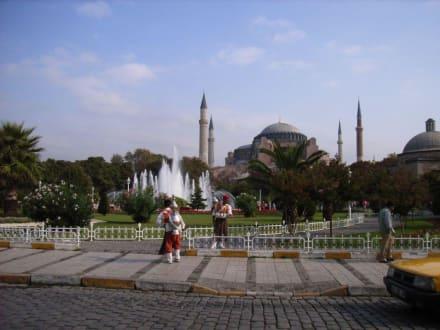 Hagia Sophia - Hagia Sophia / Ayasofya