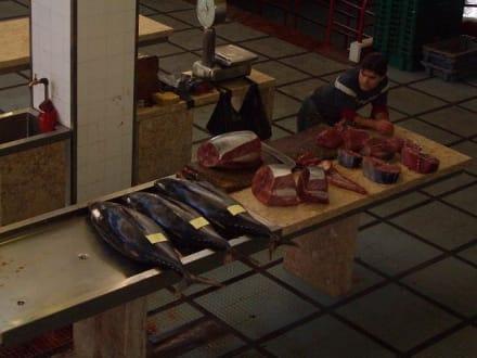 Thunfische in groß und klein - Markthalle Mercado dos Lavradores