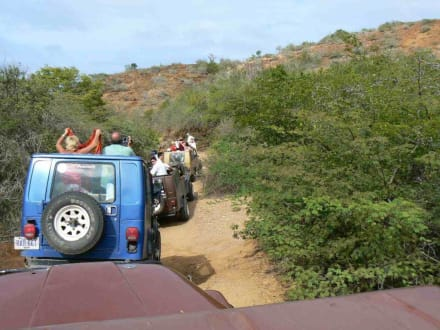 Jeep Safari - Jeep Safari