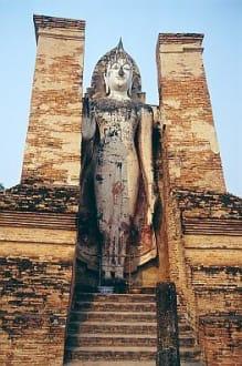 die Ruinen von Wat Mahathat. - Wat Mahathat