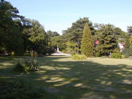 Kurpark - Bad Vöslau