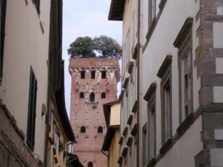 Palazzo Torre e Guinigi - Altstadt Lucca