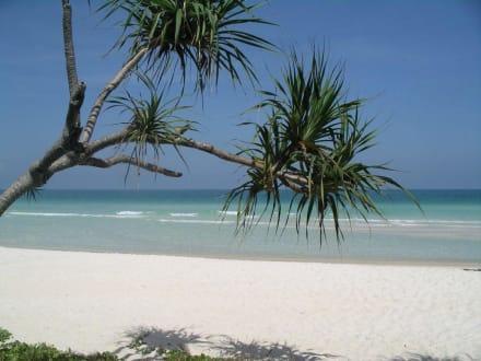 Traumstrand mit Karibik-Flair - Strand Phu Quoc