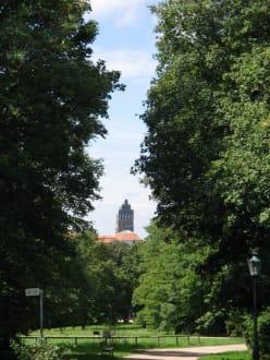 Park Rosenhöhe Sicht auf Mathildenhöhe - Rosenhöhe Park