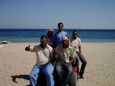 Chef Simsim und seine Truppe - Quad Tour Safaga