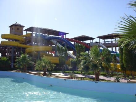 Viele Rutschen ,viel Spaß - Jungle Aqua Park