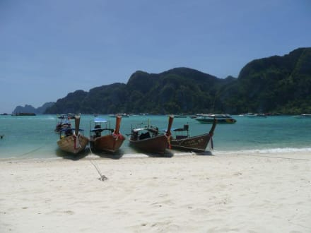Strand/Küste/Hafen - Schnorcheln Koh Phi Phi