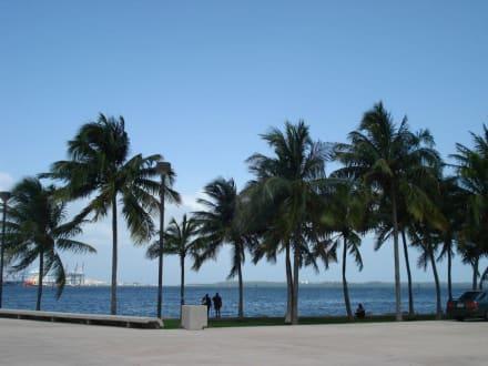 Miami Bayside - Bayside
