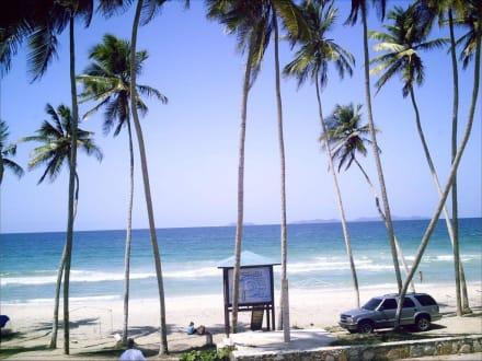 Playa EL Aqua - Strände Isla Margarita