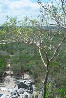 Blick von oben - Ruinenstätte Cobá