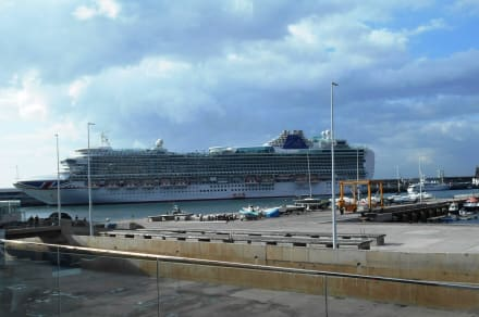 Hafen Funchal - Hafen Funchal