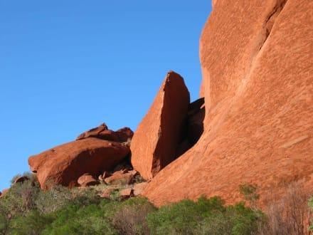 Morgen am Ayers Rock - Ayers Rock / Uluru