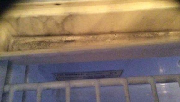 Lecker Kühlschrank