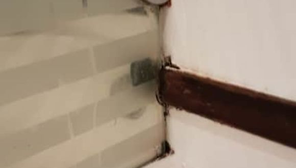 Duschwand im Bad