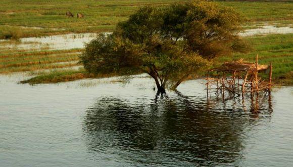 Vorbeigleitende Nillandschaft